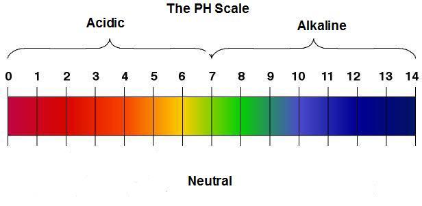 Acid Alkaline PH Scale